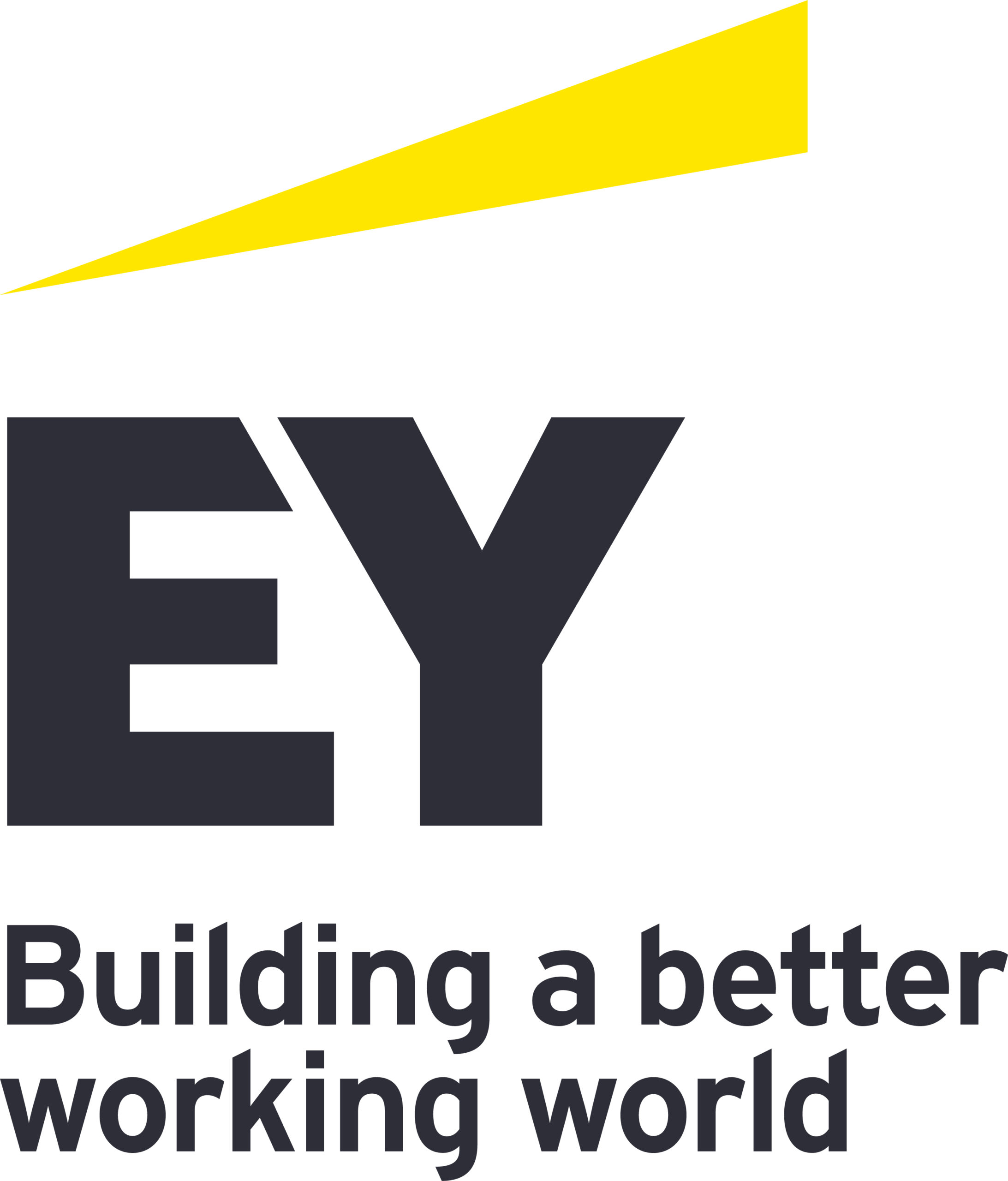 Ernst & Young LLP (EY US) logo